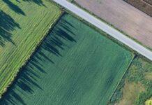 Podział nieruchomości to nie jest łatwa sprawa. Sprawdź kto i kiedy może go dokonać. Na zdjęciu działki rolne z lotu ptaka.